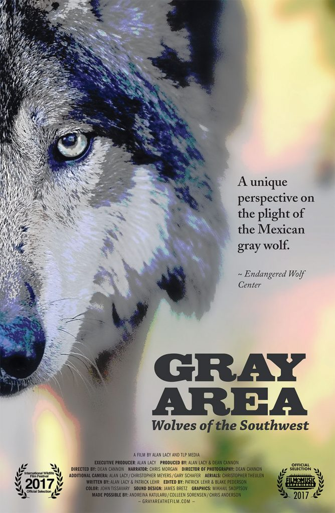 Gray Wolves of the Southwest